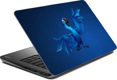 Posterhunt SVshi4857 Parrot Laptop Skin Vinyl Laptop Decal 14.1