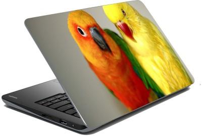 meSleep Parrot 70-404 Vinyl Laptop Decal 15.6
