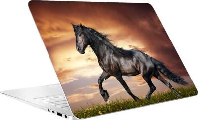 AV Styles Horse Running By Av Styles Vinyl Laptop Decal 15.6