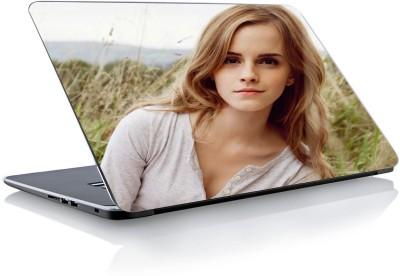 Devendra Graphics DGLS013 Vinyl Laptop Decal 15.6