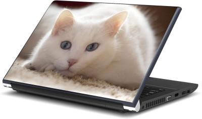 Artifa Cute Cat Beautifull Vinyl Laptop Decal 15.6
