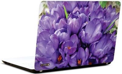 PicsAndYou Purple Petals Vinyl Laptop Decal 15.6