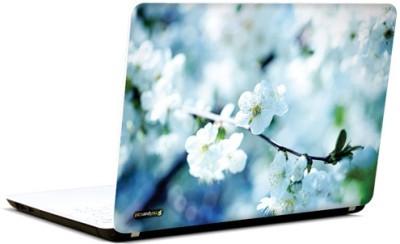 PicsAndYou Sending Joy Vinyl Laptop Decal 15.6