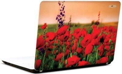 PicsAndYou Bejeweled Beauty Vinyl Laptop Decal