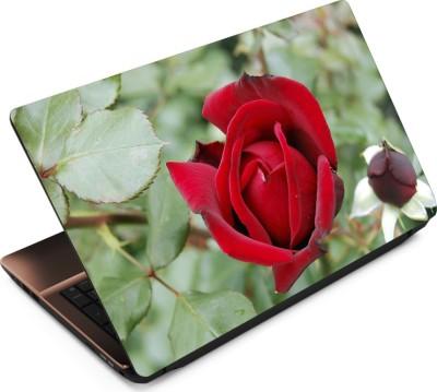 Finest Flower FL18 Vinyl Laptop Decal 15.6