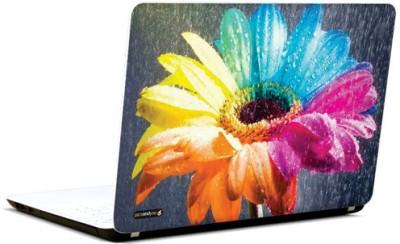 PicsAndYou Colour Me Up Vinyl Laptop Decal