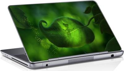 Innovate Green Leaf Engle_1231 Vinyl Laptop Decal 15.6