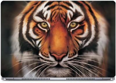 Posterboy The tiger eyes Vinyl Laptop Decal 15.6