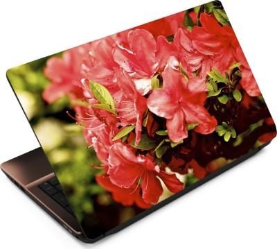 Finest Flower FL08 Vinyl Laptop Decal 15.6