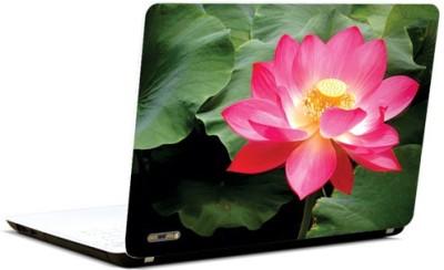 PicsAndYou Pristine Pink Vinyl Laptop Decal 15.6