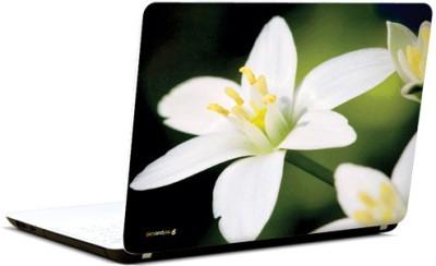 PicsAndYou Isle Of White Vinyl Laptop Decal 15.6
