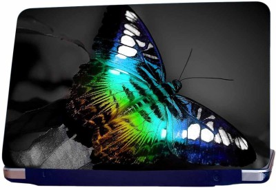 Incraze Animated Butterfly Vinyl Laptop Decal 15.6
