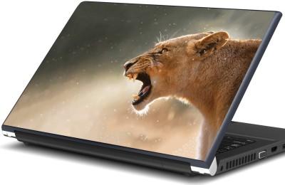 Artifa Lioness Vinyl Laptop Decal 15.6