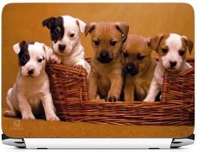 FineArts Five Cute Dogs Vinyl Laptop Decal 15.6