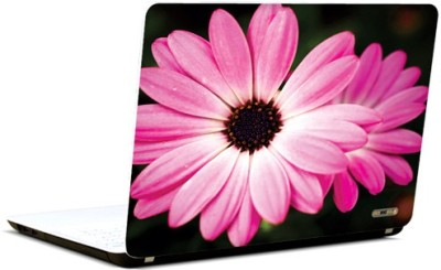 PicsAndYou Pretty Pink Present Vinyl Laptop Decal 15.6