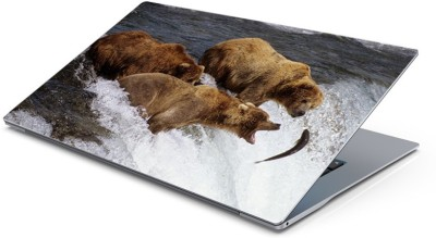 Lovely Collection bear hunting food Vinyl Laptop Decal 15.6