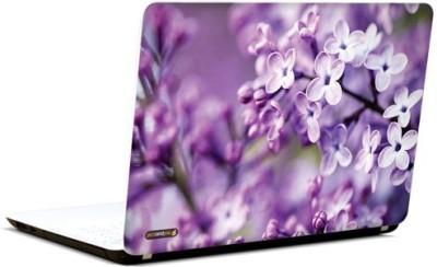 PicsAndYou Purple Passion Vinyl Laptop Decal