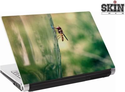 142Skin 142SA0720 Vinyl Laptop Decal