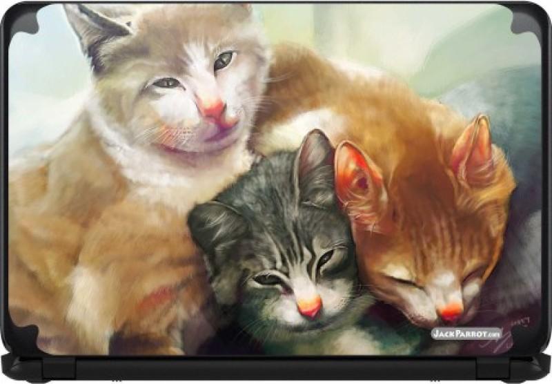 Jack Parrot Cats Vinyl Laptop Decal 14