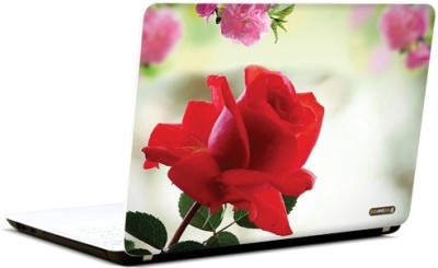 PicsAndYou Heartfelt Memories Vinyl Laptop Decal