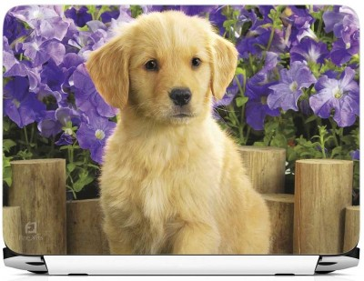 FineArts Cute Dog Wooden Back Vinyl Laptop Decal 15.6