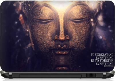 Ray Ravishing-32 Vinyl Laptop Decal 15.6