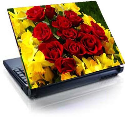 Tati ventures TB36 vinyl Laptop Decal