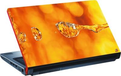 DSPBAZAR DSP BAZAR 11004 Vinyl Laptop Decal 15.6
