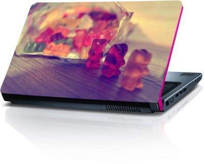 Dstore DELS022175 Vinyl Laptop Decal 15.6