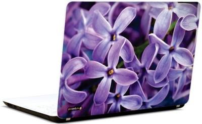 PicsAndYou Lavender Charm Vinyl Laptop Decal 15.6