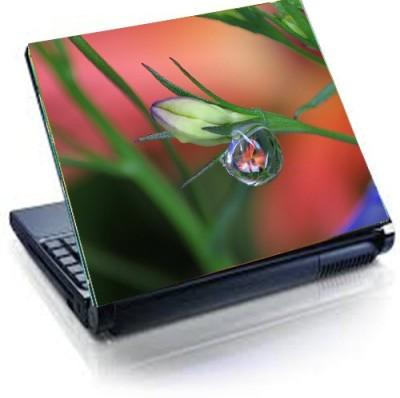 Tati ventures TB114 vinyl Laptop Decal 15