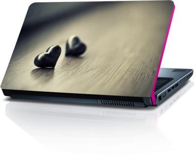 Dstore DELS022179 Vinyl Laptop Decal 15.6
