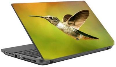 tati ventures woo1 vinyl Laptop Decal 15