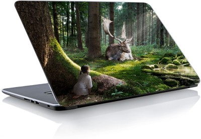 Devendra Graphics DGLS029 Vinyl Laptop Decal