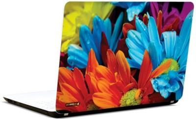 PicsAndYou Rainbow Bouquet Vinyl Laptop Decal