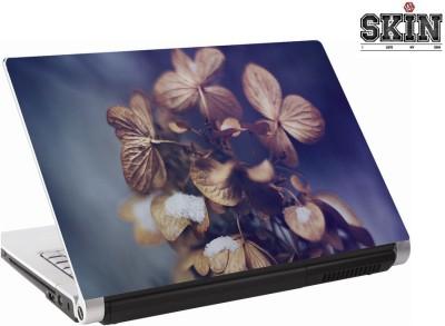142Skin brownfolder Vinyl Laptop Decal