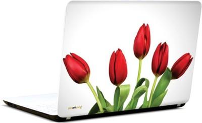 PicsAndYou Tantalizing Tulips Vinyl Laptop Decal