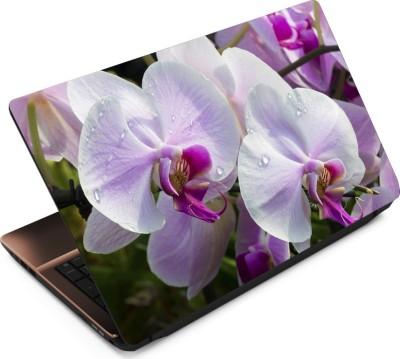Finest Flower FL24 Vinyl Laptop Decal