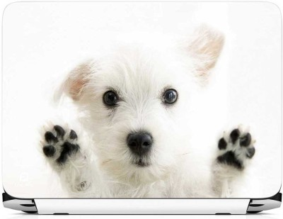 FineArts Puppy Vinyl Laptop Decal 15.6