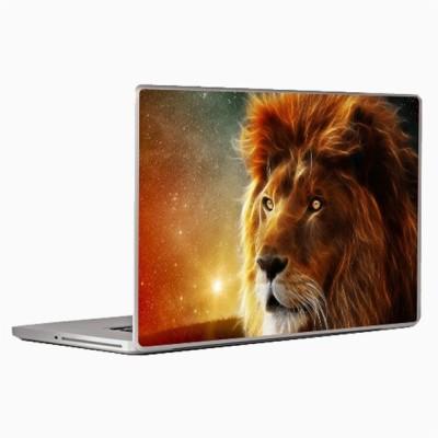 Theskinmantra Vision Skin Laptop Decal 13.3