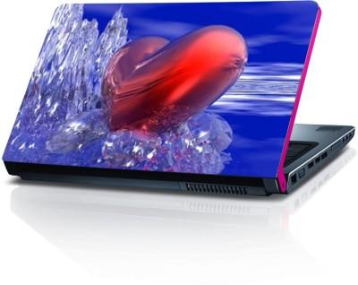 Dstore DELS022140 Vinyl Laptop Decal 15.6