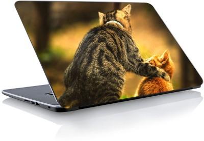 Devendra Graphics Cat Type 2 Vinyl Laptop Decal