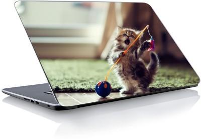 Devendra Graphics Cute Cat Type 2 Vinyl Laptop Decal 15.6