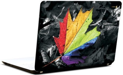 Pics And You Hued Leaf Vinyl Laptop Decal