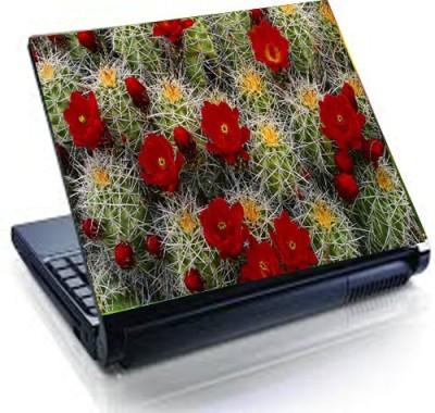 Tati ventures TB38 vinyl Laptop Decal