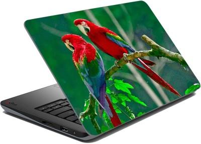 meSleep parrot 67-031 Vinyl Laptop Decal