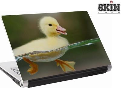 142Skin 142SA0663 Vinyl Laptop Decal 15.6