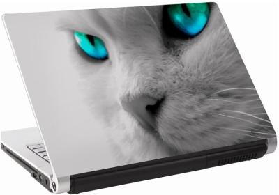 142Skin Cat Mystic Eyes Vinyl Laptop Decal 15.6