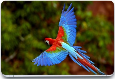Trendsmate Lovely Parrot 3M Vinyl and Lamination Laptop Decal 15.6