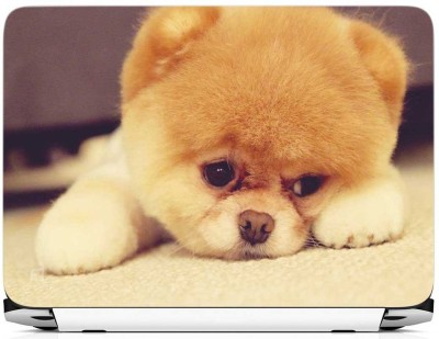 FineArts Puppy On Carpet Vinyl Laptop Decal 15.6